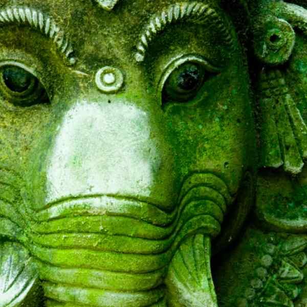 A Yogi's Travel Guide to India