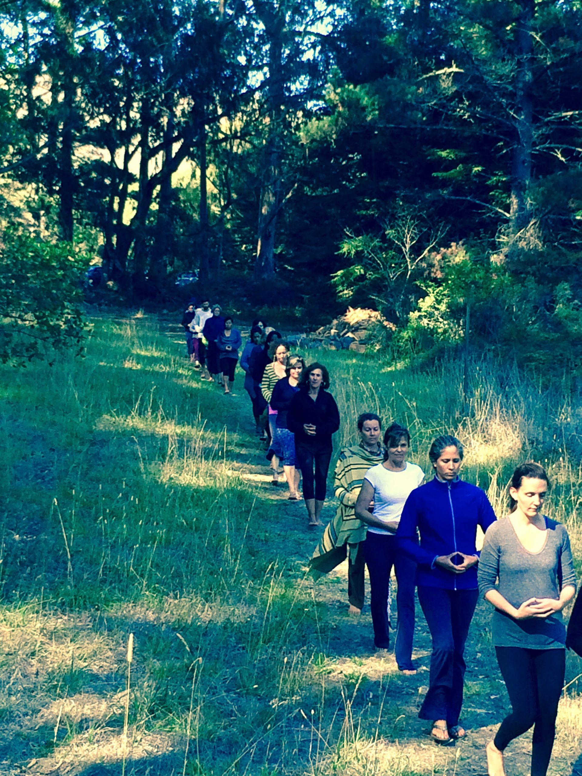 green gulch walking meditation - 1